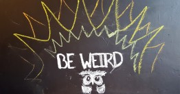 """My favorite little decoration in the entire place was this hand-drawn owl. As a prior resident of Austin, Texas, whose motto is """"Keep Austin Weird,"""" I felt right at home with this guy and his message. Long live the weirdos."""