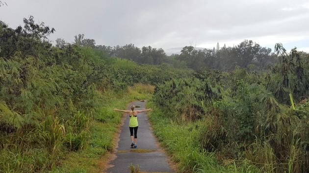 hawaii earth