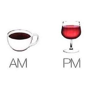 d66e4e1b1244ce88d0e799c1b18447e5--wine-funnies-wine-meme-humor